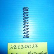 P1000644-800x600-10JPG